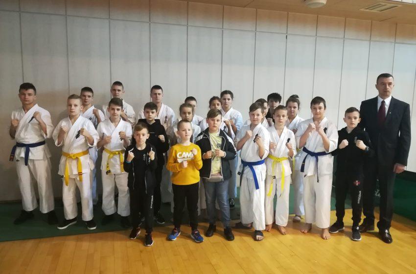 Karate Kyokushin w Chełmie